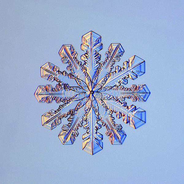Fulgi de zăpadă cu 12 ramuri