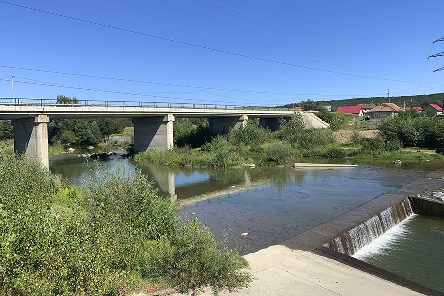 Pod peste râul Gilort, la Albeni. Foto: Fish for Life