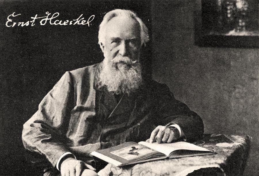 """Savantul german Ernst Haeckel, care a folosit pentru prima oară în 1866 cuvântul """"ecologie"""""""