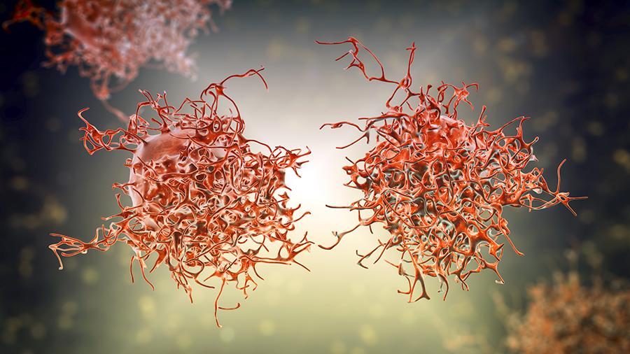 Cervical cancer cells, illustration