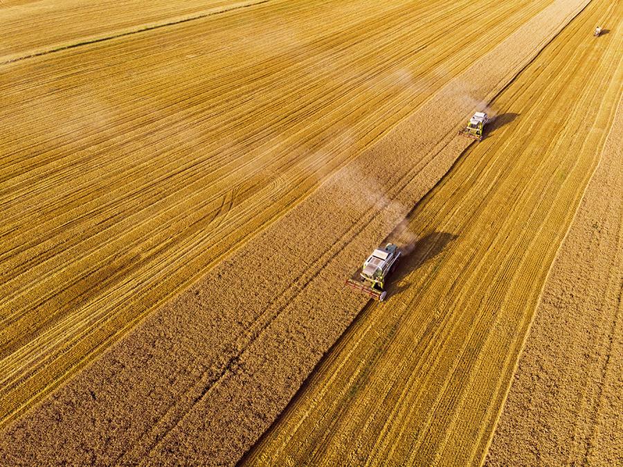 Agricultură intensivă, combină