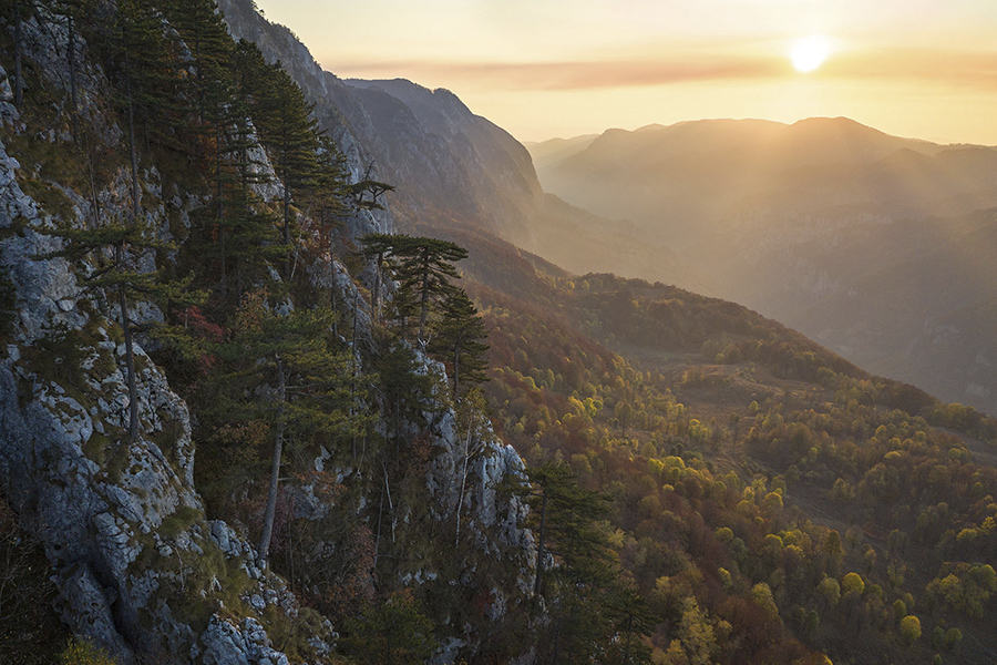 https://mindcraftstories.ro/images/2021/09/Mindcraftstories_Romania-Salbatica-Documentar-natura-Wildlife-Dan-Dinu-Cosmin-Dumitrache-TIFF_10_Dan-Dinu.jpg