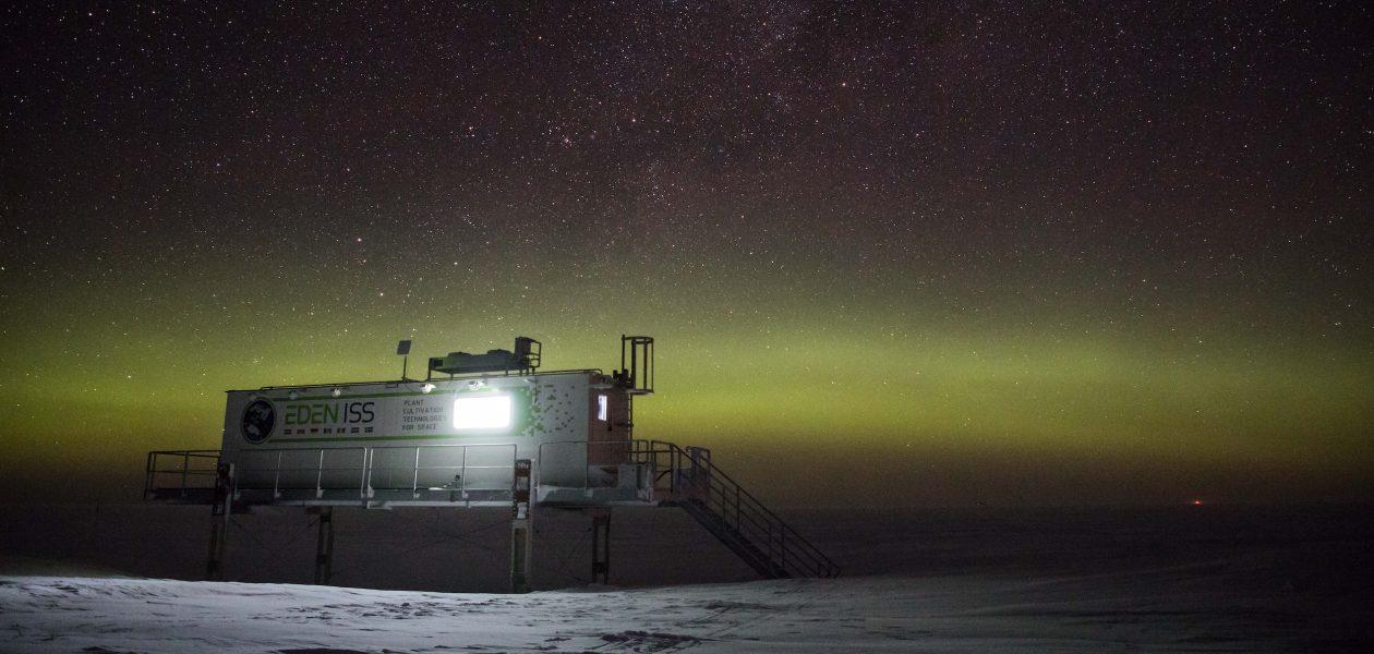 """Castraveți """"Made in Antarctica"""" – exerciții pentru agricultura spațială"""