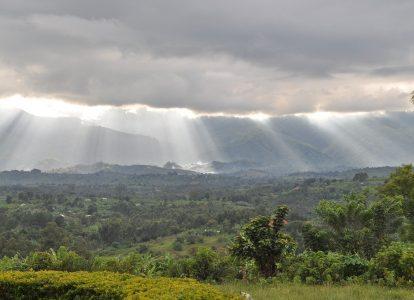 """""""OZN-ul"""" din pădurea congoleză"""
